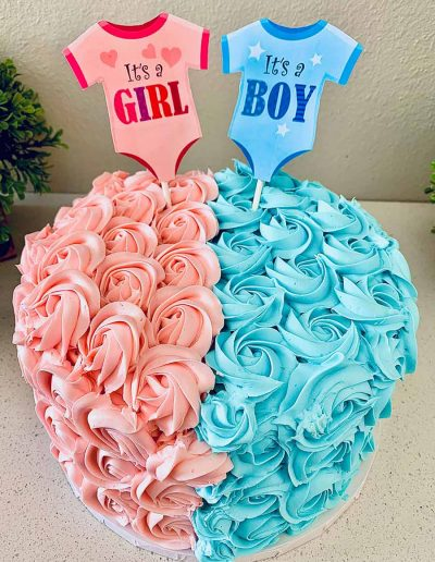 Baby Shower & Gender Reveal Collection