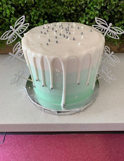 dragonfly custom cake